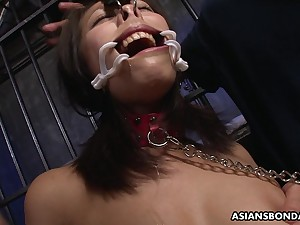 Racy brunette, Yayoi Yanagida is deepthroating balderdash deep and moaning